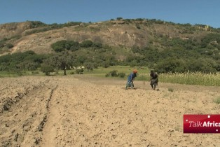 Talk Africa:  What can be done to mitigate the effects of El Nino and Africa's drought?