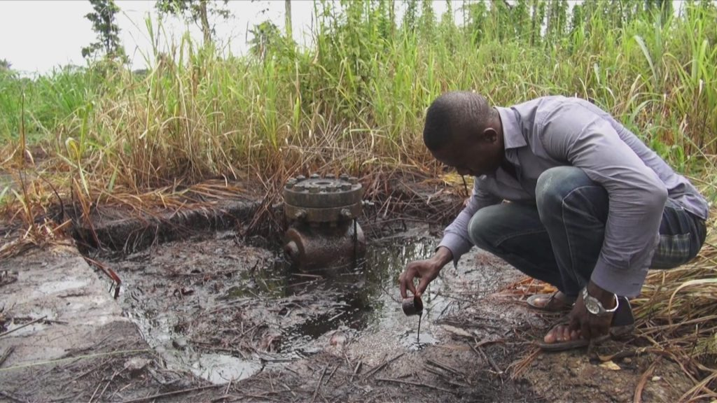 A local in Ogoni land showing crude oil that is floating in ponds amidst the maize and cassava fields.