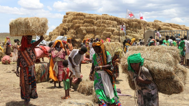 Red Cross delivering hay to prevent cattle deaths in Ethiopia