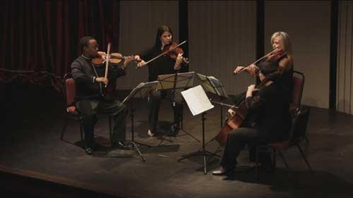The Odeion String Quartet group playing at the Brooklyn Theatre in Pretoria