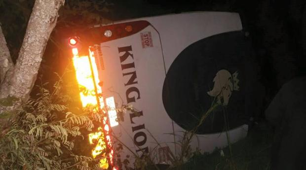 The driver of the Zimbabwean-registered bus reportedly lost control of the vehicle before it veered off the road and rammed into a tree, authorities confirmed. Image courtesy: IOL