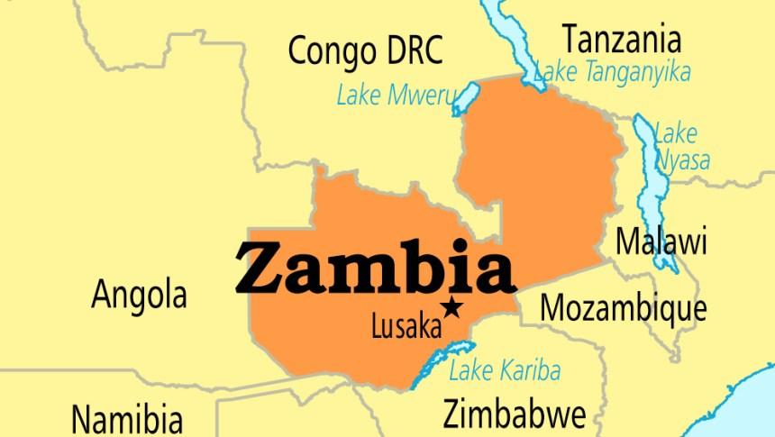 At least 36 Zambian students stranded in India | CGTN Africa