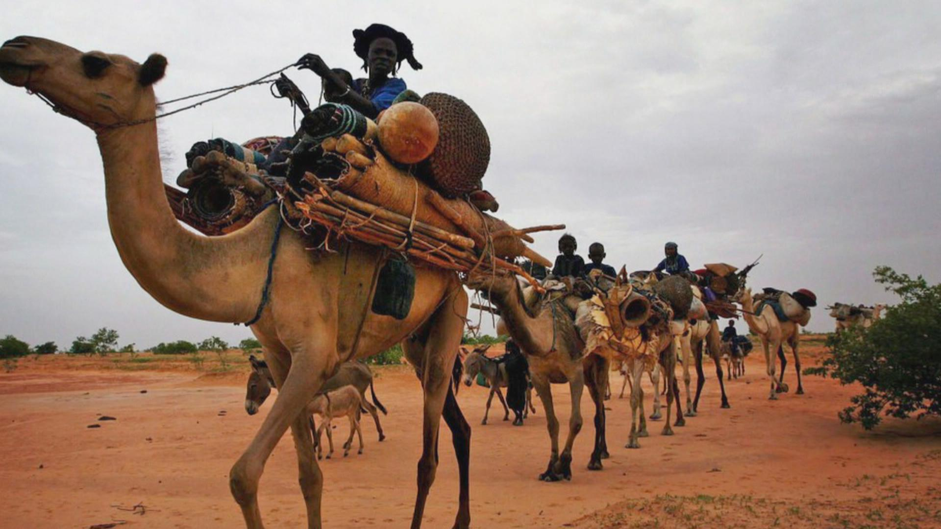 The war in Mali forced many Tuareg people to leave their homes.