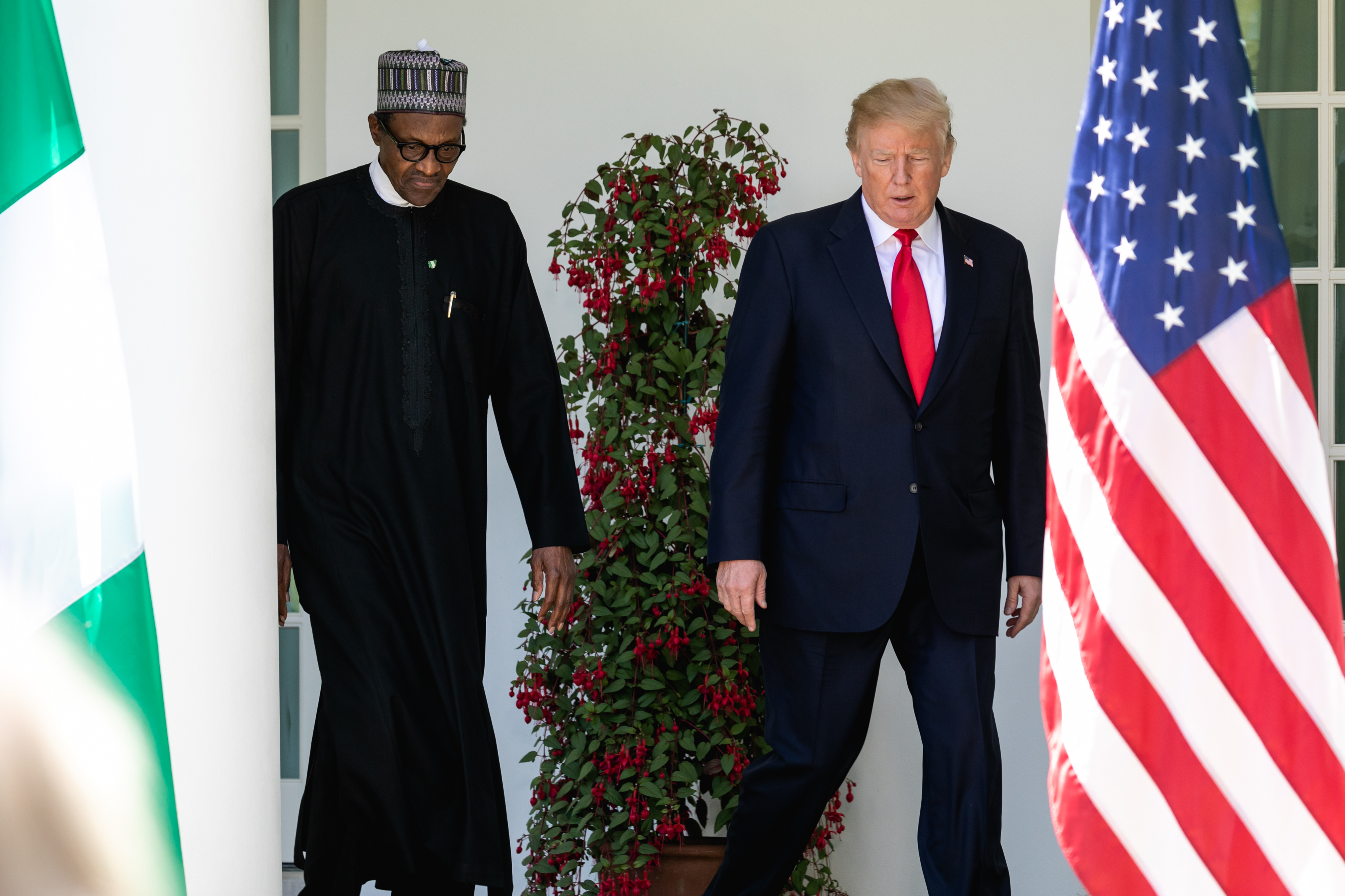 Image result for buhari and trump