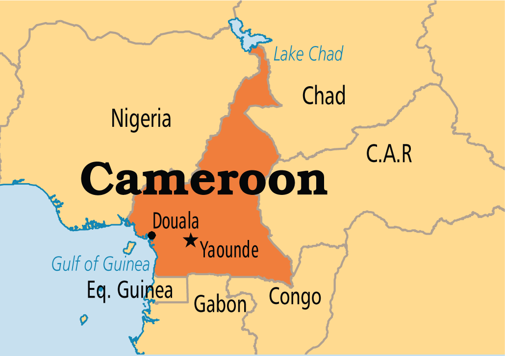 Cameroon Official Hails Higher Education Cooperation With China Cgtn Africa