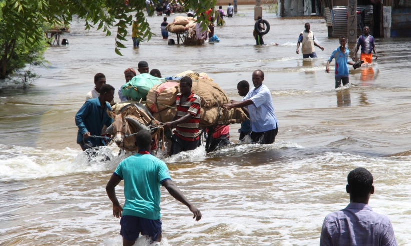 Over 150,000 Somalians fled homes since June due to flooding: UN | CGTN Africa
