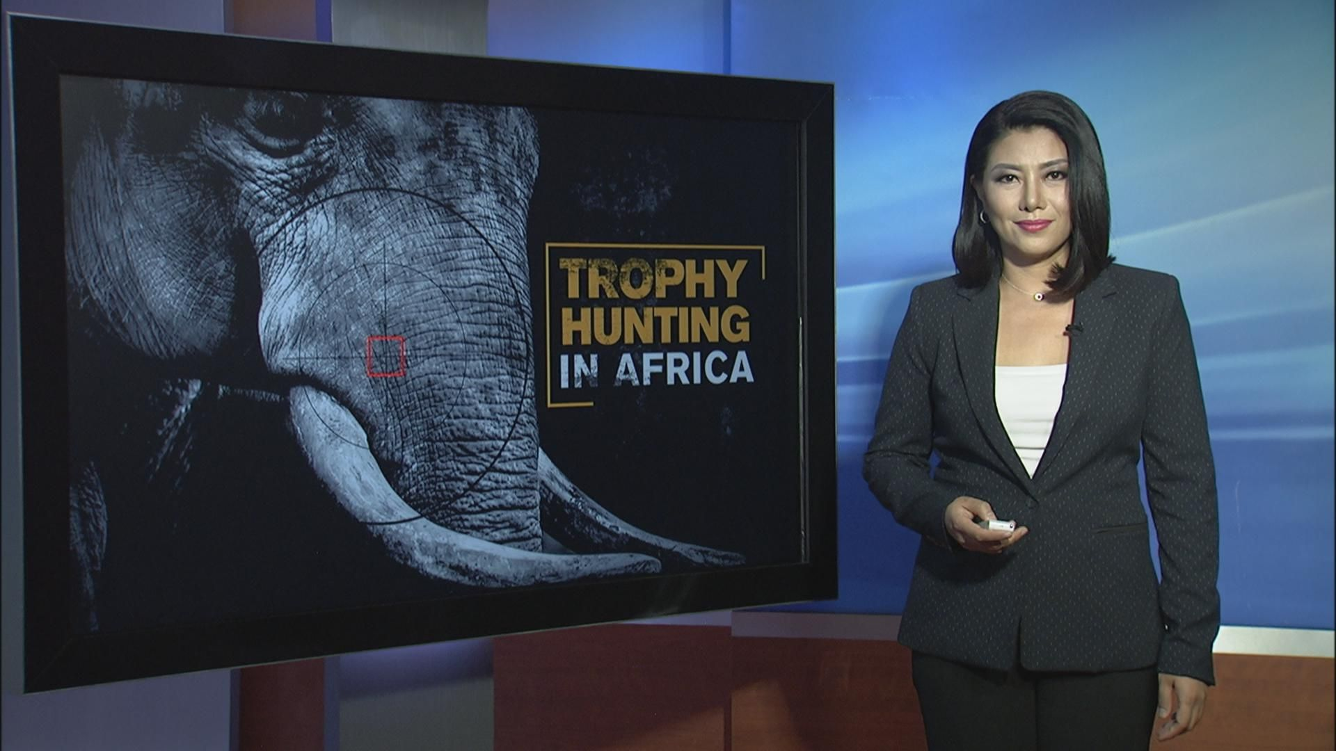 Talk Africa: Trophy Hunting in Africa